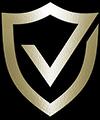 Velocity Motor Solutions